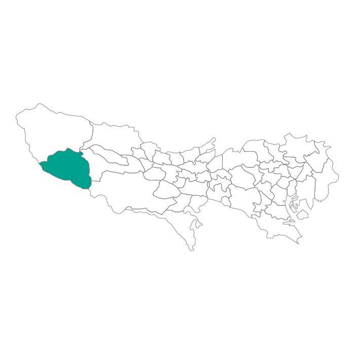 【ジャムホームメイド(JAMHOMEMADE)】日本地図  東京都  檜原村 ネックレス