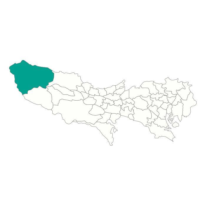 【ジャムホームメイド(JAMHOMEMADE)】日本地図  東京都  奥多摩町 ネックレス