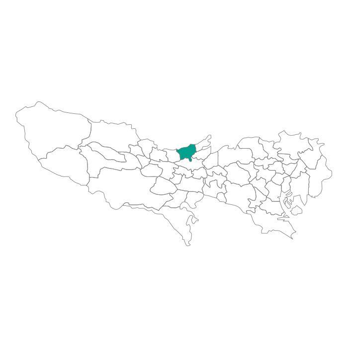 【ジャムホームメイド(JAMHOMEMADE)】日本地図  東京都  東村山市 ネックレス
