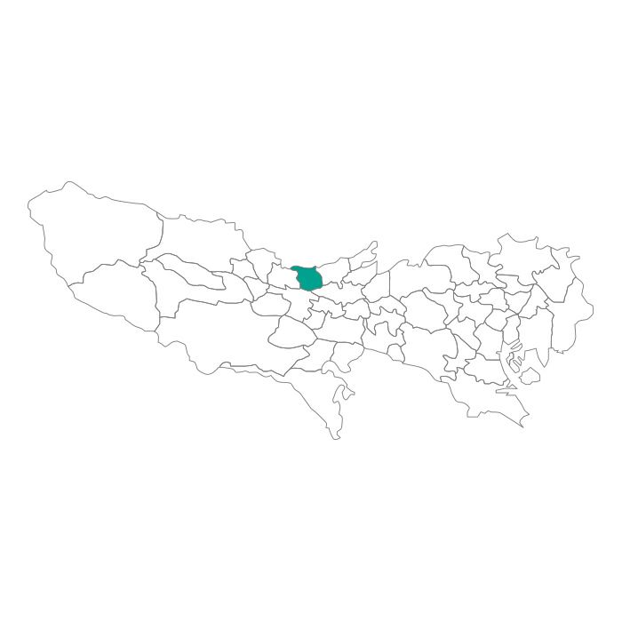 ネックレス / 日本地図 東京都 東大和市ネックレス メンズ レディース ペア シルバー ブランド おすすめ ギフト プレゼント シンプル プレート ご当地 グッズ 都道府県 23区 TOKYO