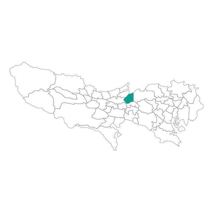 ネックレス / 日本地図 東京都 西東京市ネックレス メンズ レディース ペア シルバー ブランド おすすめ ギフト プレゼント シンプル プレート ご当地 グッズ 都道府県 23区 TOKYO