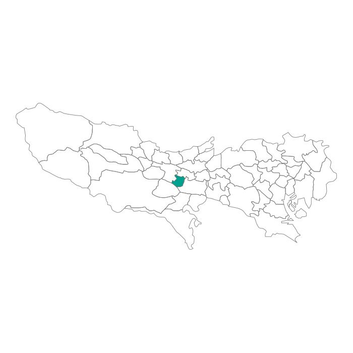【ジャムホームメイド(JAMHOMEMADE)】日本地図  東京都  国立市 ネックレス