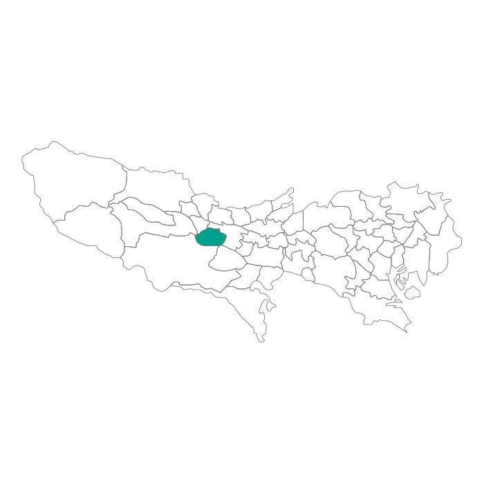 【ジャムホームメイド(JAMHOMEMADE)】日本地図  東京都  昭島市 ネックレス