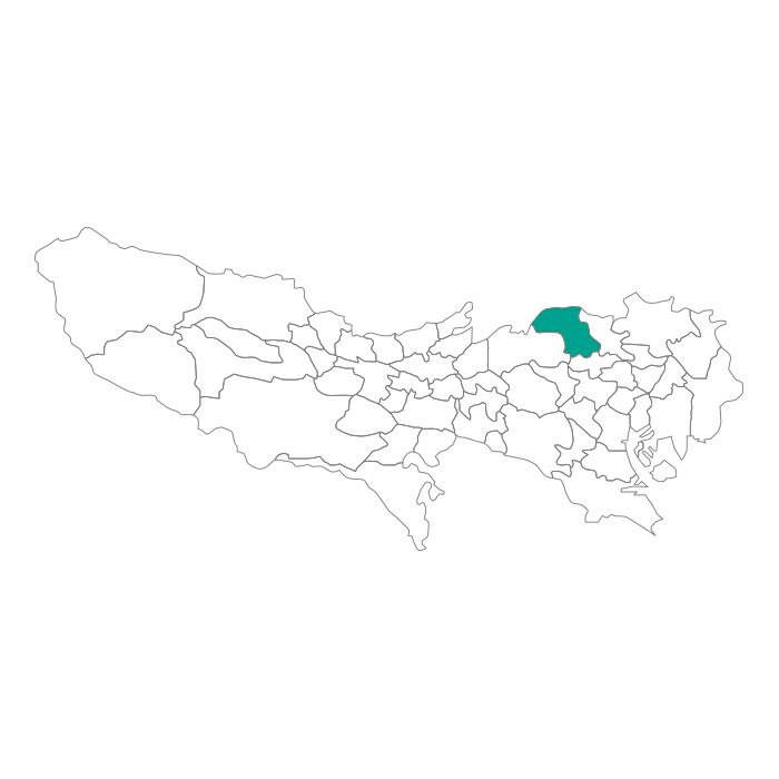 ネックレス / 日本地図 東京都 板橋区ネックレス メンズ レディース ペア シルバー ブランド おすすめ ギフト プレゼント シンプル プレート ご当地 グッズ 都道府県 23区 TOKYO