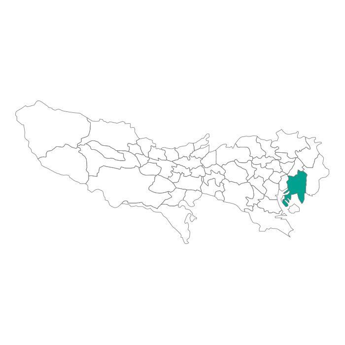 日本地図  東京都  江東区ネックレス
