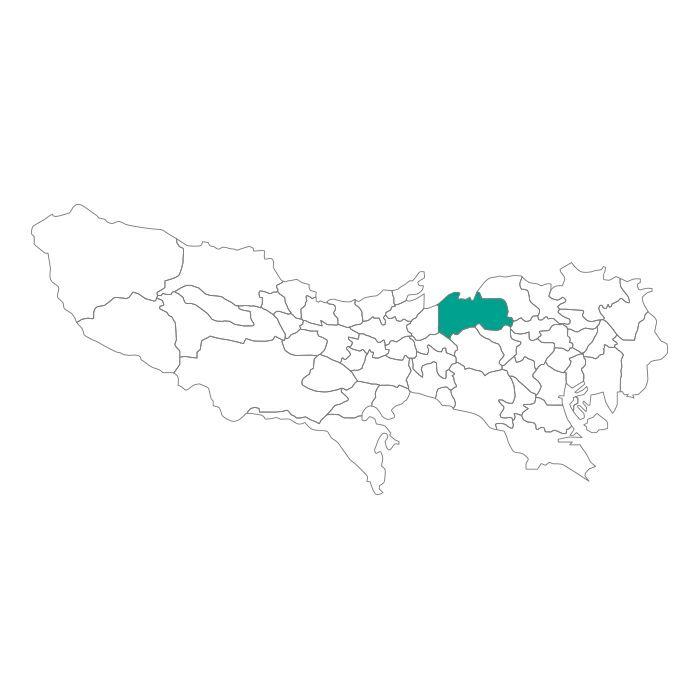 【ジャムホームメイド(JAMHOMEMADE)】日本地図  東京都  練馬区 ネックレス