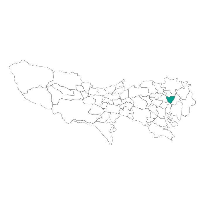 ネックレス / 日本地図 東京都 台東区ネックレス メンズ レディース ペア シルバー ブランド おすすめ ギフト プレゼント シンプル プレート ご当地 グッズ 都道府県 23区 TOKYO
